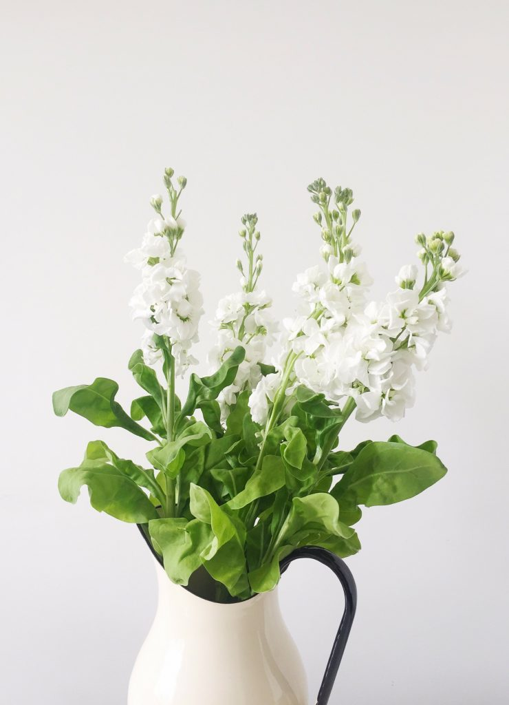 A white vase of white flowers with green leaves. It is the image for Power Exchange and Dependency.